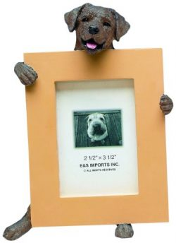 Chocolate Lab Picture Frame Holds Your Favorite 2.5 by 3.5 Inch Photo, Hand Painted Realistic Lo ...