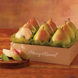 The Favorite® Royal Riviera® Pears – Gift Baskets & Fruit Baskets – Harry and David