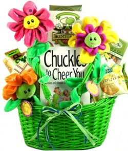 Whimsical Gift Basket | Get Well, Cheer Up, Thinking of You