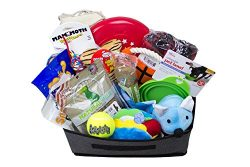 Dog Pooch Gift Basket, Get Well, Dog Lovers, Special Occasion, Made In The USA Dog Treats and Sn ...