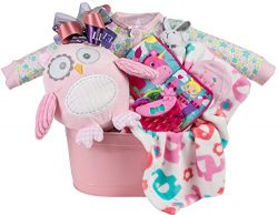 Newborn Baby Girl Gift Basket with Blanket, Plush Owl, Sleeper, Hat and Toys