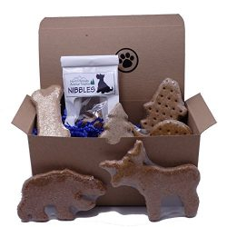 Dog Gift Box with Assorted Treats – Made in USA