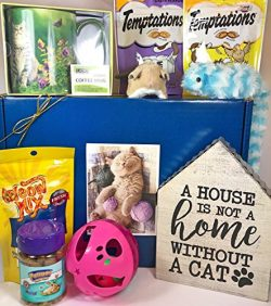 Cat Gift Box Basket For A Favorite Feline Fur Baby and His / Her Guardian — Send These Tre ...