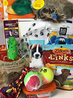 Deluxe Dog Gift Box Basket With 4 Grain Free Gluten Free Treats and 4 Toys For A Favorite Canine ...