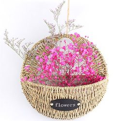 NCYP Thank You Flower Basket Wall Hanging Iron Straw Woven Flower Pot Planter Garden Decor Small