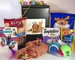 Dog & Cat Gift Box Basket For Favorite Canines & Felines (Kitty, Kitten, Fur Baby) ̵ ...
