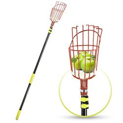 Fruit Picker Tool or Fruit Picking Equipment with Basket – 13ft Long Aluminium Telescoping Pole  ...