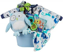 Newborn Baby Boy Gift Basket with Blanket, Plush Owl, Sleeper, Hat and Toys
