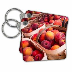 Danita Delimont – Fruit – Peaches for sale at a farmers market, Charleston, South Ca ...