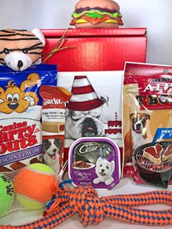Dog Gift Box Basket For A Favorite Canine Fur Baby – Bulldog with Birthday Cake – Se ...