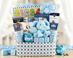 Gourmet Foods Gift Baskets, Bundle of Joy, Perfect for a Baby Shower or to Welcome Mom and Her P ...