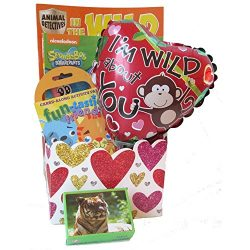 Wild About You Kids Valentine's Day Gift Basket for Boy and Girls Ages 3 to 8 by Gifts Ful ...