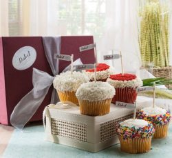 Gourmet Assorted Vanilla Cupcake Gift Basket