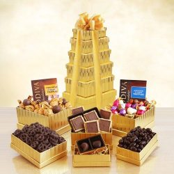 Godiva Premium Chocolate Gift Set
