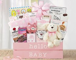 Wine Country Gift Baskets Welcome Home Baby Girl