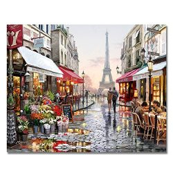 Rihe DIY Oil Painting Paint By Numbers Kits Mounted on Wood Frame with Brushes Acrylics Painting ...