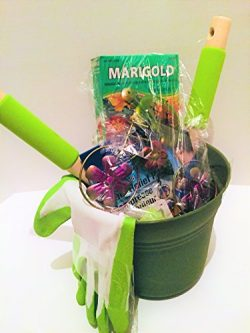 Garden Lovers Gift Basket Birthday Mothers Day Fathers Day Every Day Seeds Gardening Gloves Outd ...