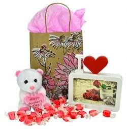 Mothers Day Floral Kraft Gift Bag With Small Plush Bear Picture Frame And Cherry Salt Water Taffy
