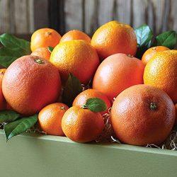 Citrus Medley Gift Box – The Fruit Company
