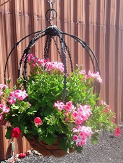 Scroll Trellis Trellis for hanging basket to support vines and/or string lights (2, Black with L ...