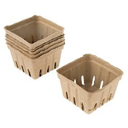 Darice Natural Paper Berry Basket, 6 Piece
