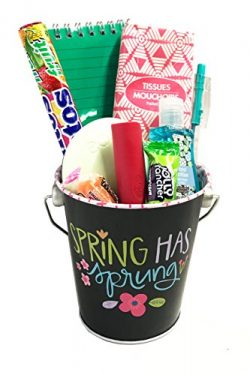 Thinking of You Gift Basket – Let Her Know You Care with this Spring Has Sprung Gift Baske ...