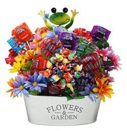 Spring Gift Basket |Charms Mini Pops,Sweet Pops,Lollipop Bouquet | Includes a Garden Reusable Pl ...