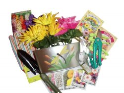 Spring Has Sprung Gift Basket ~ Mother's Day ~ Flower Seeds & Gardening Tools