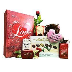 Chocolate Gift Basket with Madelaine Semi Solid Milk Chocolate Rose, Plush Chocolate Kiss Bear,  ...