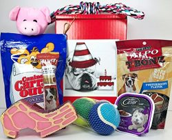 Specialty Gift Boxes Dog Gift Box Basket For A Favorite Canine Fur Baby – Bulldog Bull Dog ...