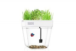 Back to the Roots Water Garden, Betta Fish Tank That Grows Plants, One 2018's Top Gardenin ...