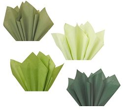 Forest Sage Olive Moss Green Assorted Mixed Color Multi-Pack Tissue Paper for Flower Pom Poms Ar ...