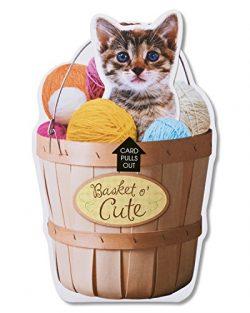 American Greetings Funny Basket O' Cute Birthday Card