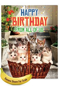 From All Us Cats Birthday' Large Greeting Card with Envelope (8.5″ x 11″) &#82 ...