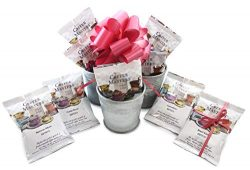 Coffee Masters Around The World In Twelve Coffees Farmhouse Gift Caddy With Bow From Well Pack Box