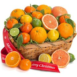 Golden State Fruit Merry Christmas Sweet Citrus Fruit Gift Basket