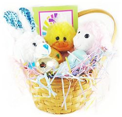 Easter Gift Basket Premade and wrapped (13pc set) – Filled with Easter plushies, stuffed e ...