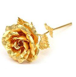 Adabele Gifts I Love You Rose Flower Golden Foil Lasts Forever Gift Box Romantic for Women Anniv ...