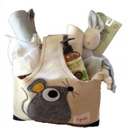 Organic Baby Gift Basket Under 100.00 for Boy – Blue
