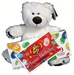 Birthday Gift Set For Kids – 3 Piece Plush Teddy Bear and Jelly Belly Happy Birthday Assor ...