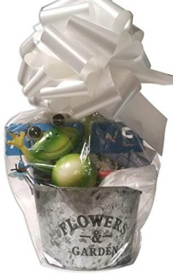 Flower Planter Gift Basket with Galvanized Metal Pot, Soil, Seeds, and Garden Decoration (Plante ...