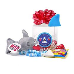 I CHEWS You – Shark Themed Valentine's Day Gift Window Box Basket with Candy and Plush