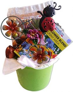 Flower Planter Gift Basket with Plastic Pot, Soil, Seeds, and Garden Decoration Metal Wind Chime ...