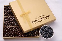 Andy Anand's Chocolates- Premium California Blueberries covered with Vegan Rich Dark Chocolate i ...