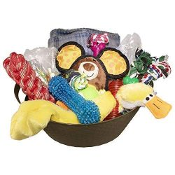 Just Chill'In Pets Dog Gift Basket with Durable Dog Toys – Dog Treats – Dog Bl ...