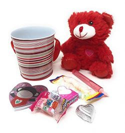 P2P RED Gift Set Valentine's Day (1) 5 Inch RED Teddy Bear (1) Valentine's Day Tin F ...