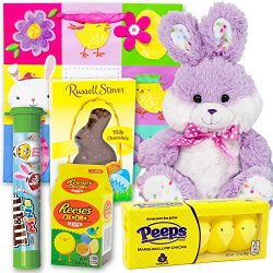Easter Basket Gift Bag | 9 Inch Polka Dot Bunny Plush, M&M Candy Tube, Russell Stover Milk C ...