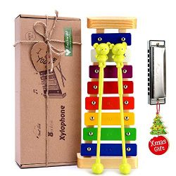 Xylophone for Kids: Best Holiday/Birthday DIY Gift Idea for your Mini Musicians, Musical Toy wit ...