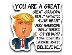 95Vibes Donald Trump Fathers Day Funny for Grandpa – Nice Gift from Son Daughter Wife Viny ...