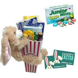 Happy Easter Movie Night Gift ~ Limited Edition Junior Mints Eggs ~ Movie Popcorn, Concession St ...